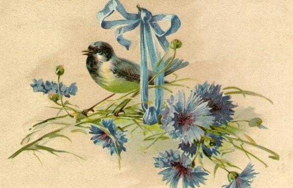 Carte ancienne fleurs