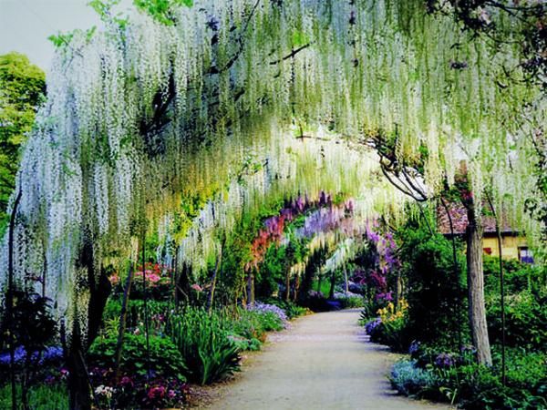 Beaux paysages de france page 25 for Apremont sur allier jardin