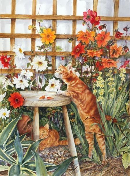 Gif et image de chat