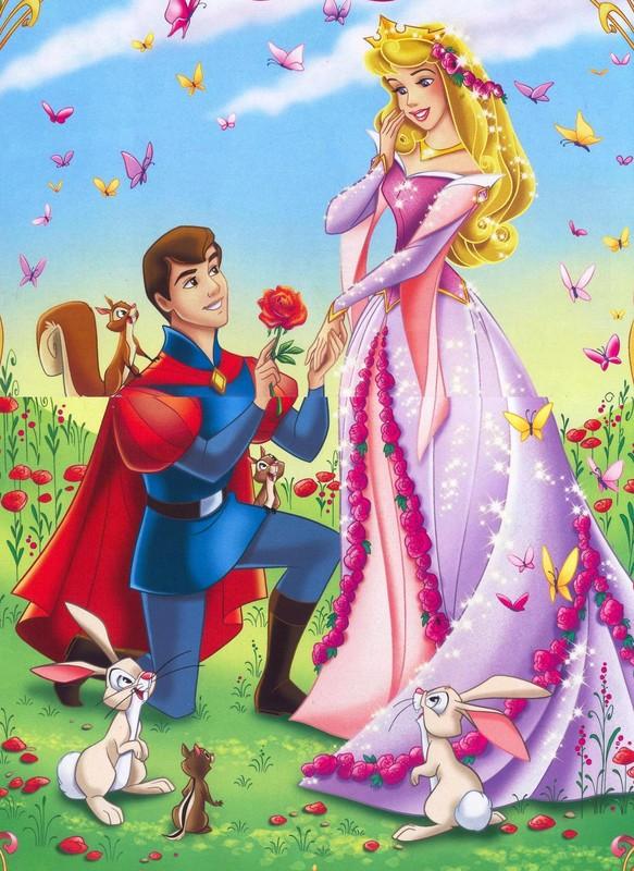 Prince et princesse disney - Prince et princesse dessin ...