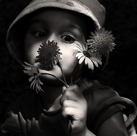 bouquet de fleurs noir et blanc james ellroy le dahlia noir