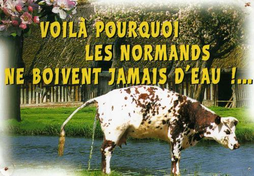 image drole normandie