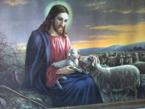 """Bonne semaine à tous  """" Dieu nous donne des pasteurs selon Son coeur"""" A4bc4a6c"""