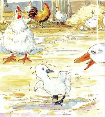 Conte d'Andersen- Le vilain petit canard