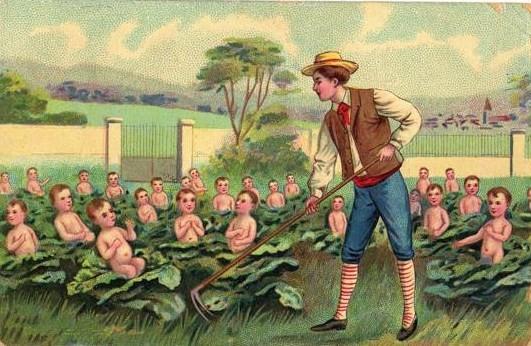 """Résultat de recherche d'images pour """"les enfants naissent dant les choux"""""""