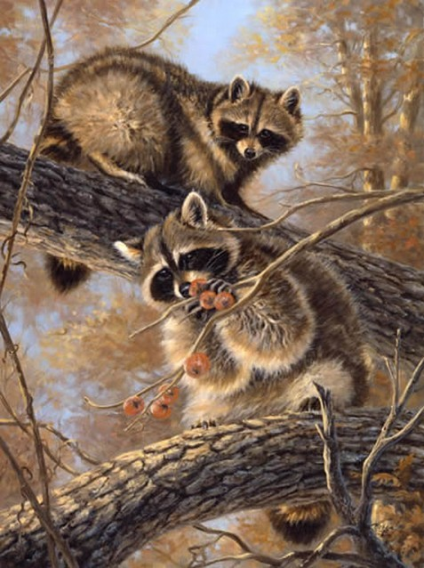 Linda Picken On Pinterest Art Studios Animaux And