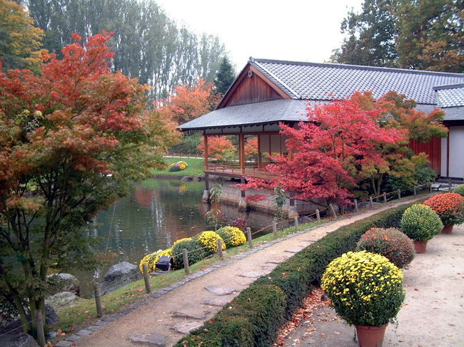 Jardin japonais de monaco for Le jardin japonais monaco