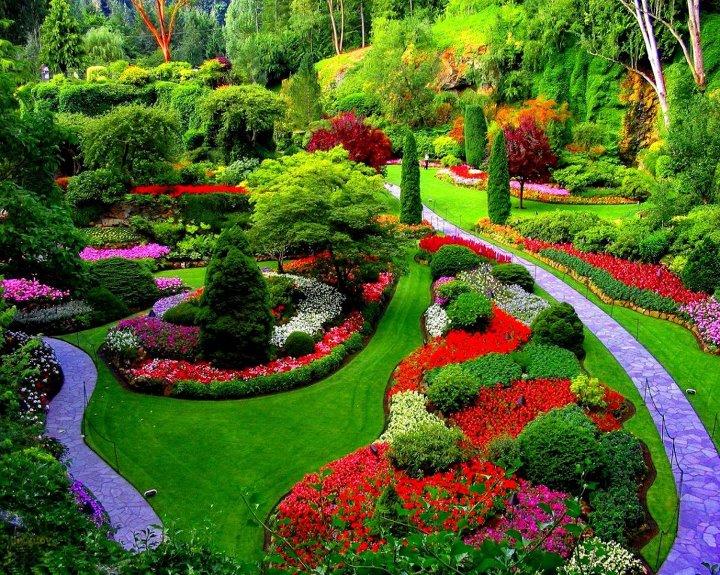 Parcs Et Jardins Aux Printemps Page 29