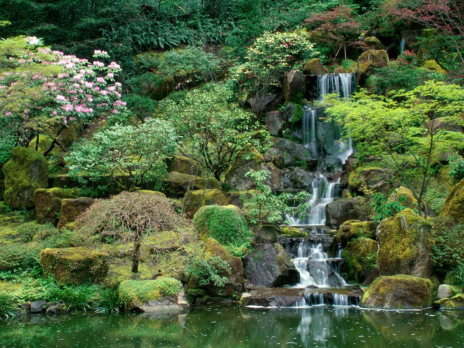 Natural Japanese Modern Landscape Paysages Printemps Et