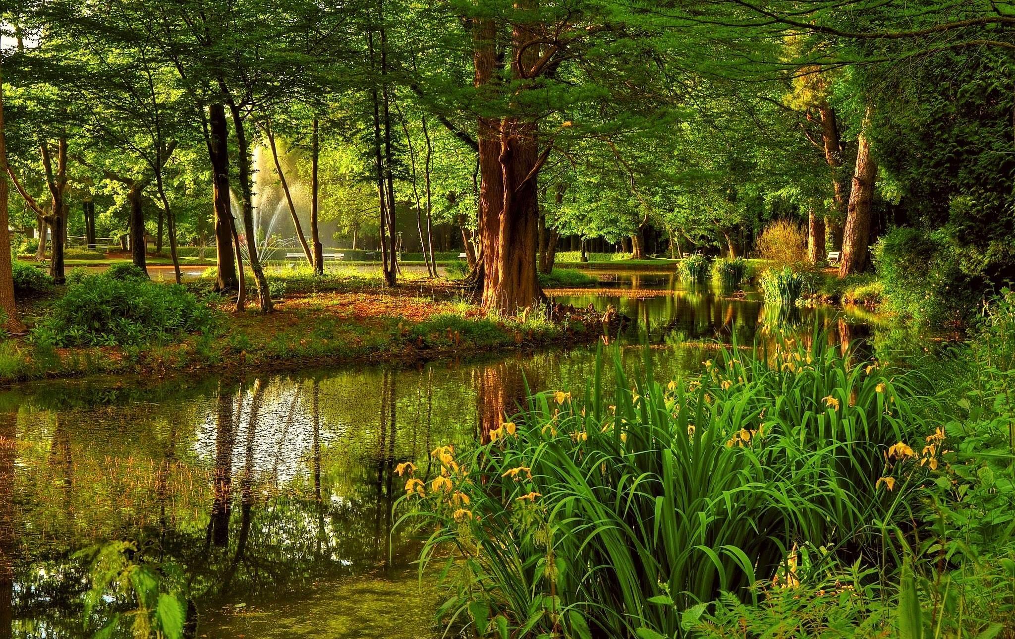 Beaux paysages for Jardin japonais fond d ecran