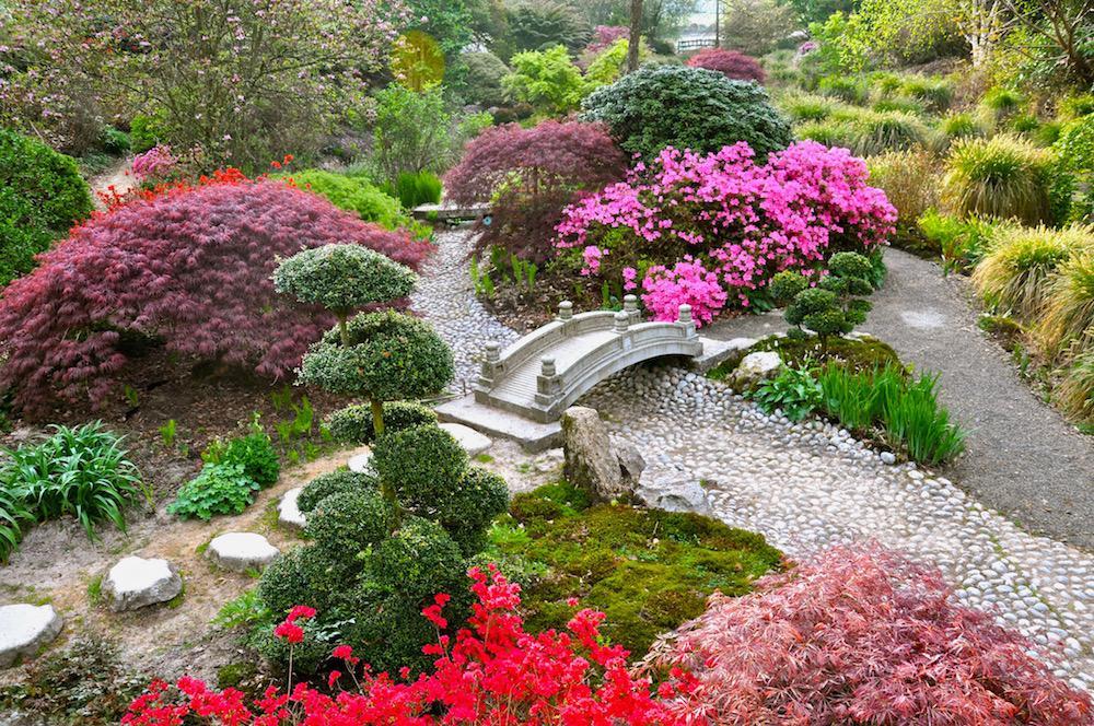 Jardin fleuri for Jardin fleuri lyon 9
